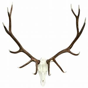 Rustic Elk European Decor