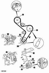 2004 Suzuki Forenza Timing Belt Diagram