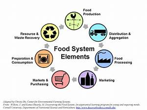 Local Food System Supply Chain