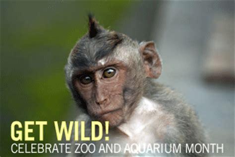 wild celebrate zoo  aquarium month