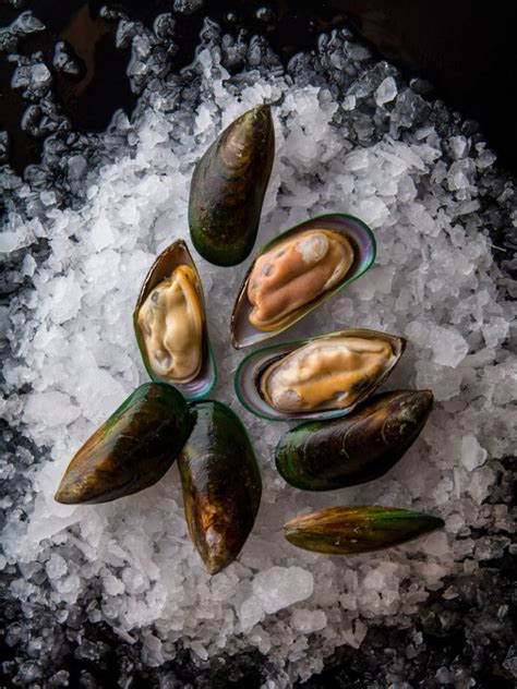 Mussel Health | Mills Bay Mussels