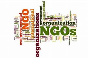 Economics of Non-governmental Organizations - Capitol Hill ...