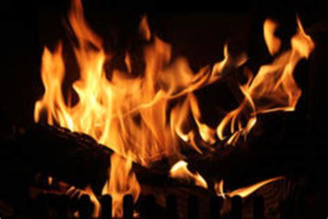 roaring campfire stock illustration image  flame