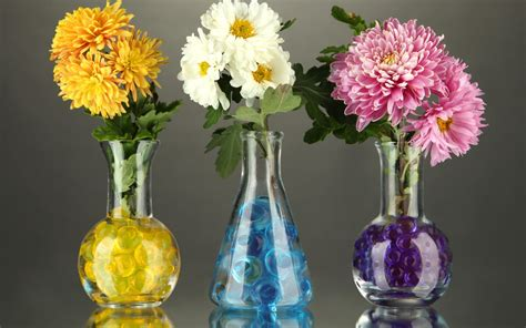 22+ Flower Vase Wallpapers, Backgrounds,images, Pictures