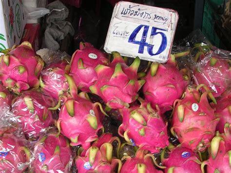 dragonfruit dragon fruit world crops