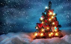 2560x1600 Outdoor Christmas Tree Desktop PC And Mac ...
