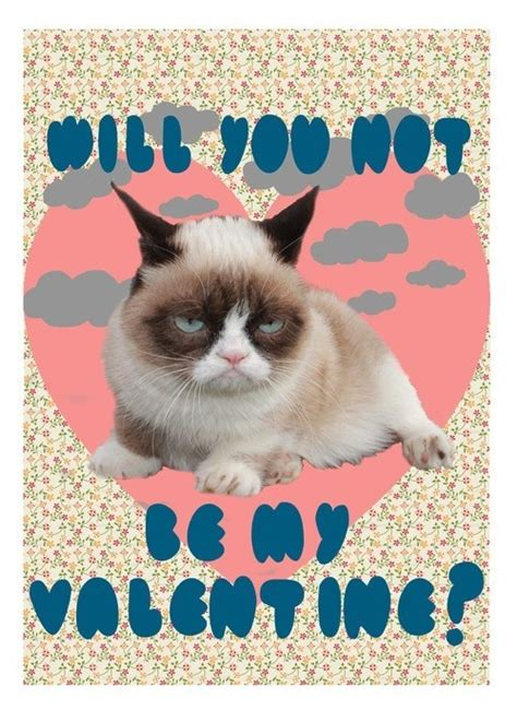 Grumpy Cat Meme Valentines Day - 1000 images about grumpy cat on pinterest grumpy cat humor grumpy cat mug and grumpy cat