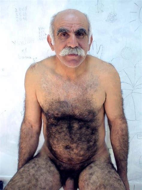 Turkish Gay Bear Datawav