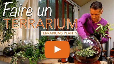 comment faire un terrarium faire un terrarium verre terrariums plants