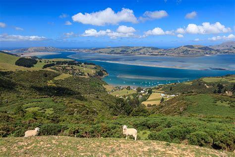 Discover A Little Bit Of Scotland In Dunedin New Zealand