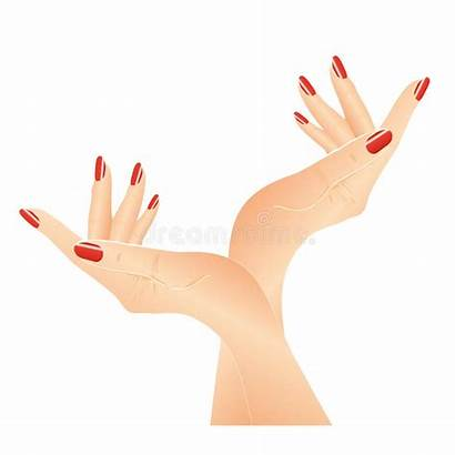Nails Vector Hands Clipart Manicure Hand Nail
