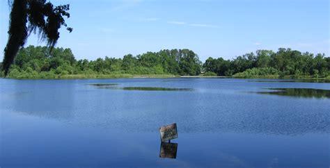 File:Dsg UF Lake Alice 20050507.jpg - Wikimedia Commons
