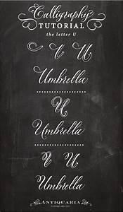 "Antiquaria: Calligraphy Tutorial | the Capital Letter ""U"""