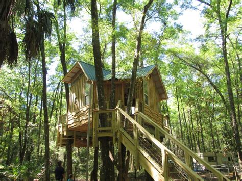 treehouses youll    leave  treehouse