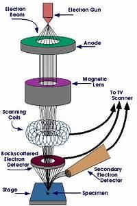 Ray Diagram Lenses