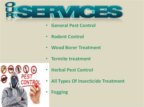 Looking For Pest Control Noida Contact
