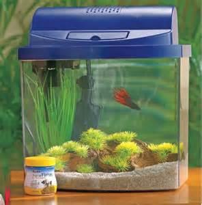 Betta Fish Tank Small Aquarium