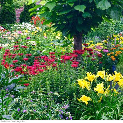 plants that grow in clay soil clay soil plants