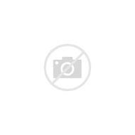Purple Tissue Paper Pom Poms