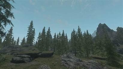 Trees Vanilla Lush Skyrim Mods Falkreath Huge