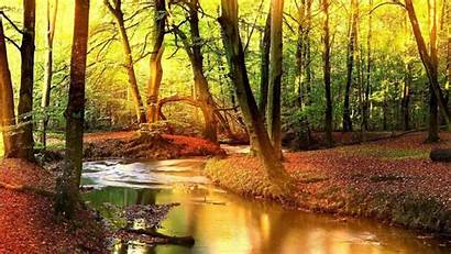 Wallpapers Outdoors Fall Water Background Nature Monitor