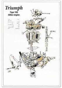 Triumph 500cc Pre Unit Engine Technical Drawing  Tiger 100