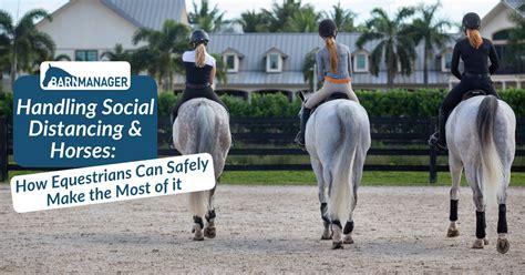 distancing social horses