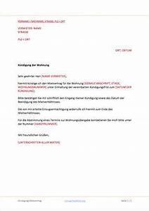 Wohnung Kündigen Vorlage : k ndigung mietvertrag hochzeit vertrag k ndigung und kostenlose vorlagen ~ Eleganceandgraceweddings.com Haus und Dekorationen