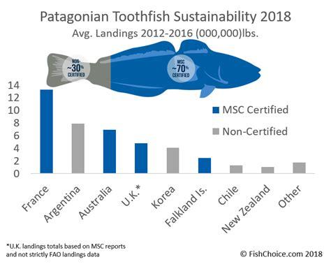 chilean sea bass nutrition facts besto blog