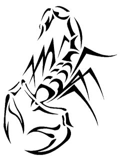 Tattoo scorpion PNG imagen