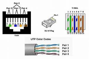 Cat 5 Wiring Diagram : cat5 wiring diagram ~ A.2002-acura-tl-radio.info Haus und Dekorationen