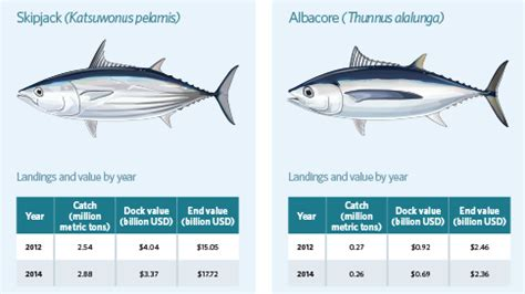 Tuna Boat Cost by Netting Billions A Global Valuation Of Tuna The Pew