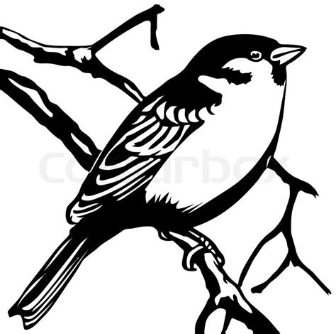 sparrow clipart black and white vector silhouette sparrow on white background stock