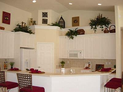 Ideas For Kitchen Plant Shelves plant shelves plants and shelves on