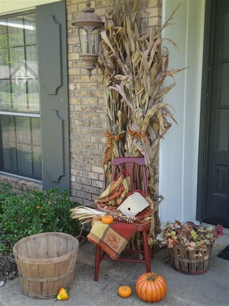 where to buy corn stalks for decorating 14 best quot indian corn quot images on fall crafts