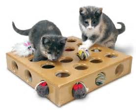 cat toys bowhouse simply the best
