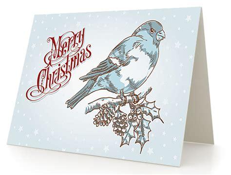 greeting card design   greeting cards