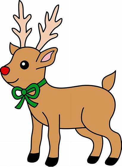 Reindeer Cliparts Clip Clipart Nosed Projects