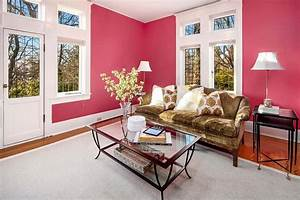 20, Pink, Living, Room, Ideas, For, 2019