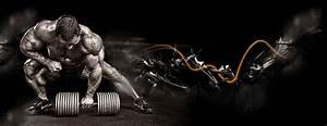 Buy Anabolic Steroid Turinabol Online