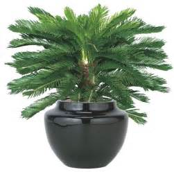 outdoor artificial plant artificial flowers plants and trees chicago by home infatuation