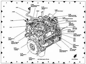 Doc  Diagram 4 Powerstroke Oil Pressure Switch Wiring
