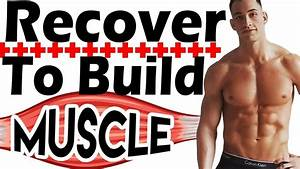 How To Build Muscle Faster With Proper Recovery After Workout Muscle Recovery Tips