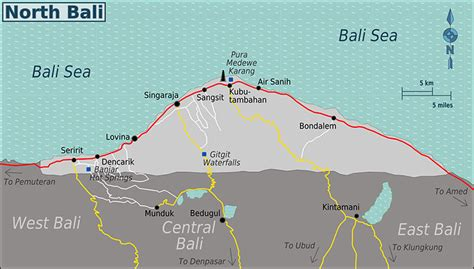 ultimate guide  exploring north bali lovina