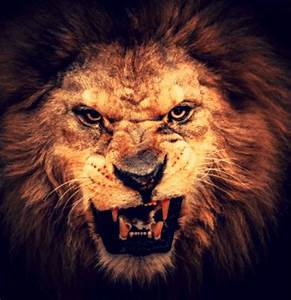 There Will Stand Up a Fierce-looking King - The Watchman's ...