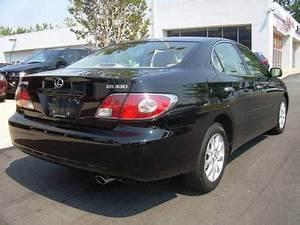 2005 Lexus ES 330 Overview CarGurus