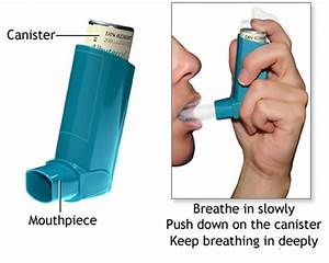 Asthma Attack Causes  Allergy  Triggers