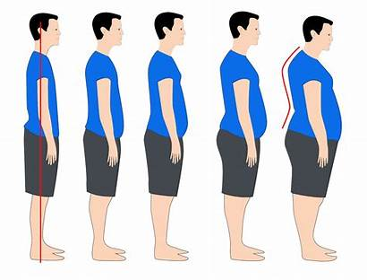 Weight Posture Upright Gain Totters Tetter