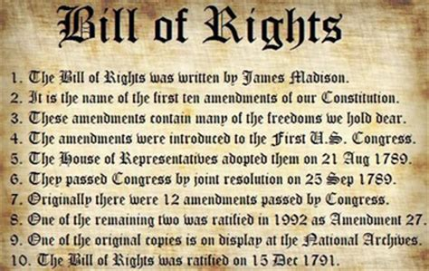 The Bill Of Rights  From The Trenches World Reportfrom