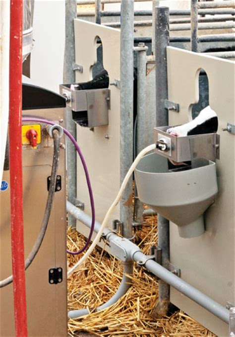 automatic calf feeders roundtable which automatic calf feeder is best for you